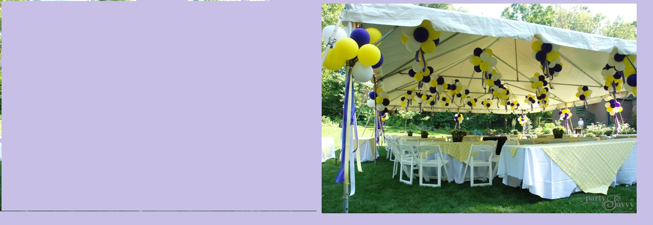 All event party rental party equipment tent canopy rental catering rental - Gazebo get upcoming barbecues ...